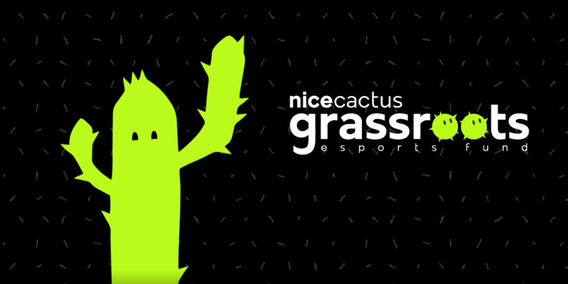nicecactus grassroots series a